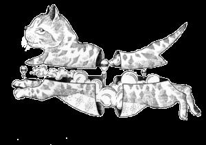 Gatti-volanti-vector