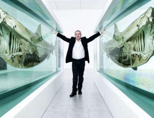 Il controverso caso dello squalo da 12 milioni di dollari